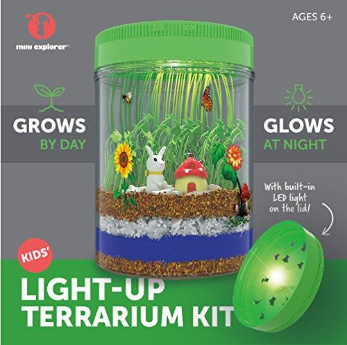 Light Up Terrarium Kit For Kids With Led Light On Lid Create Your